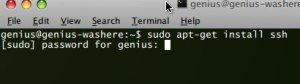 install ssh